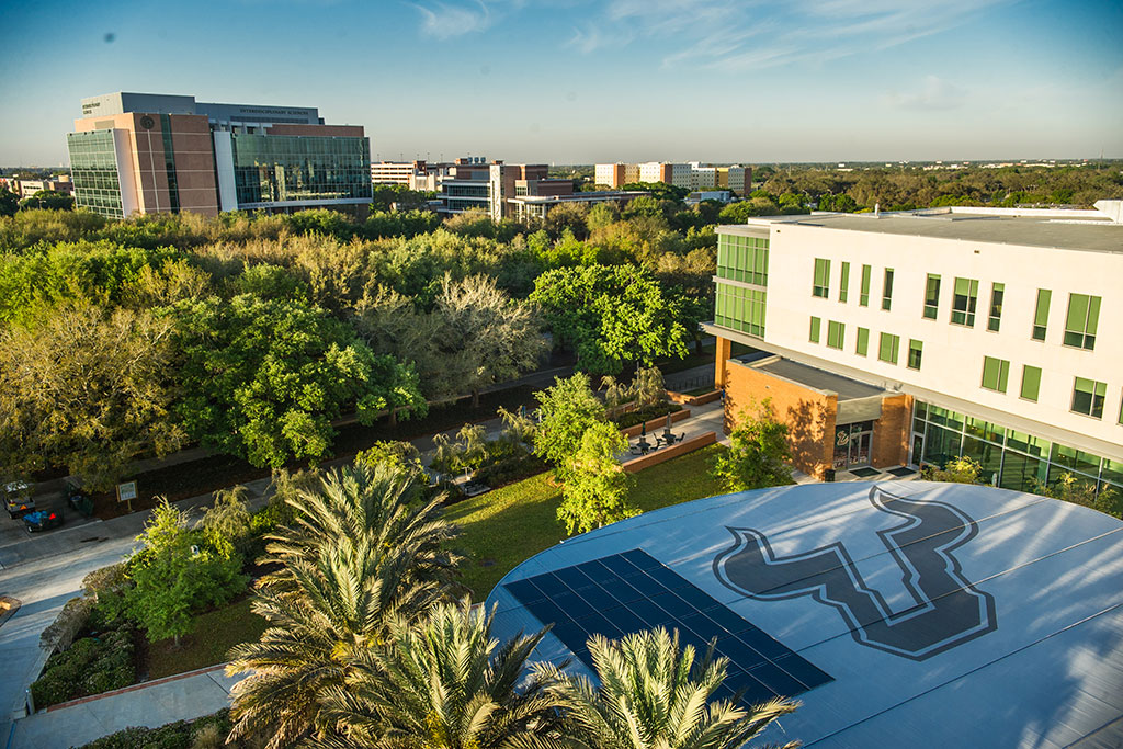 INTO-USF-intro-aerial-campus